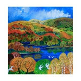 Terns over Rydal Water, 2009 Giclee Print by Lisa Graa Jensen