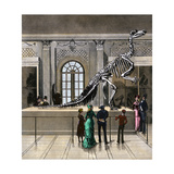The Great Iguanodon Skeleton at the Brussels Museum, 1880s Giclee Print