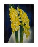 Daffodils, 1954 Giclee Print by Mark Gertler