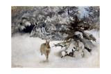 A Hare in the Snow, 1927 Giclee Print by Bruno Andreas Liljefors
