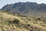 Florida Mountains of the Mexico Borderland Seen From Rockhound State Park, New Mexico Photographic Print
