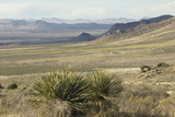 Chihuahuan Desert Landscape Looking north From the Florida Mountains, Southern New Mexico Photographic Print