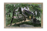 Church and Graveyard in Springtime Photographic Print