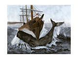 "Bow of the Ship ""Essex"" Striking a Whale Giclee Print"