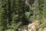 Rio Del Pueblo in the Sangre De Cristo Mountains, New Mexico Photographic Print