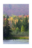 Autumn Colors in the Hills of Quebec, Canada, Behind Arnold Pond (Named for Benedict Arnold) Photographic Print