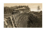 Island Railway Crossing Arbutus Canyon, British Columbia, 1800s Photographic Print