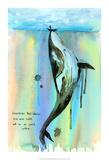 Whale-a-la Plakater af Lora Zombie