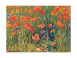Poppies Giclee Print by Robert William Vonnoh