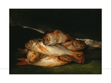 Still Life With Golden Bream Giclee Print by Francisco de Goya