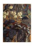 Flowers Giclee Print by Nikolai Semyonovich Zaytsev