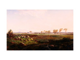 Mount Fyans Woolshed (The Woolshed Near Camperdown) Giclee Print by Louis Buvelot