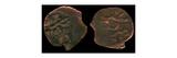 Coins of Uzbeg Khan Giclee Print by Ancient Coins Numismatic
