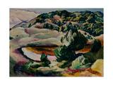 Korolkovskiye Dachas. Pond in the Hills Giclee Print by Alexei Ilyich Kravchenko