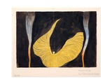 Loie Fuller in the Dance 'The Archangel' Giclee Print by Koloman Moser