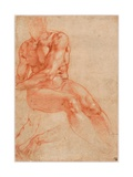 Seated Young Male Nude And Two Arm Studies Giclee Print by  Michelangelo Buonarroti