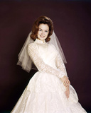 Shelley Fabares Photo