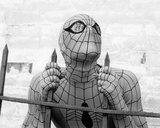 The Amazing Spider-Man (1978) Photo