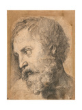 Head of An Apostle (Study for 'Transfiguration') Giclee Print by  Raphael
