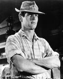 Paul Newman, Hud (1963) Photo
