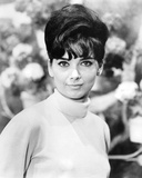 Suzanne Pleshette, The Ugly Dachshund (1966) Photo