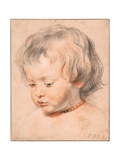 Nicolaas Rubens Wearing a Coral Necklace Giclee Print by Pieter Paul Rubens