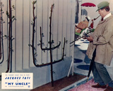 Mon oncle (1958) Photo
