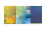 Earth Textures Panel 1 Fotografie-Druck von Jan Weiss