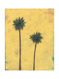 Palm Tree Silhouette Photographic Print by Jan Weiss