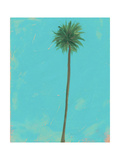 Palm Silhouette Two Photographic Print by Jan Weiss