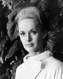 Tippi Hedren, The Birds (1963) Photo