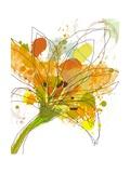 Spring Mix Fotografie-Druck von Jan Weiss