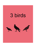 3 Birds Photographic Print by Jan Weiss
