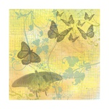 Morning Butterfly Photographic Print by Jan Weiss