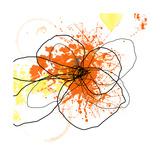 Orange Pop Photographic Print by Jan Weiss