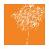 Blossom Pop Orange Fotografie-Druck von Jan Weiss