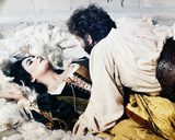 The Taming of the Shrew (1967) Photo