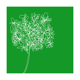 Blossom Pop Emerald Photographic Print by Jan Weiss