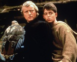 Ladyhawke Photo