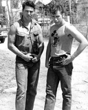 The Outsiders (1983) Foto