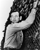 David Janssen, The Fugitive (1963) Photo