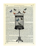 Bird Cage & Butterflies Prints by Marion Mcconaghie