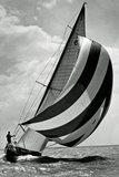 Sail Boat 4 Poster Photo