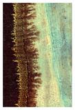 Lichen I Posters by J. McKenzie