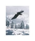 Free Flight (detail) Giclee Print by Daniel Smith