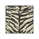 Zebra Skin Giclee Print by Susan Clickner