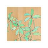 Soft Leaves Giclee Print by Jennifer Mercede