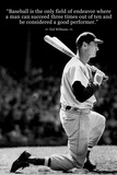 Ted Williams Baseball Famous Quote Plastic Sign Plastové cedule