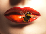Bee Sting on Lips Photographic Print by Graeme Montgomery