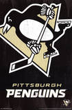 Pittsburgh Penguins Logo Prints